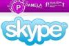 Pamela for Skype Pro / Business