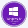 Windows 10 Pro 2009