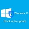 Block auto-update