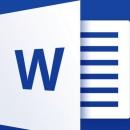 Microsoft Office Word 2007 SP3 Enterprise Portable