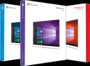 Microsoft Windows 10 Version 20H2