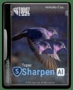 Topaz Sharpen AI x64