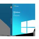 Windows 10x86x64 Enterprise 20H2