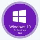 Windows 10 Pro 20H2 x64 ru