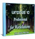 Windows 10 Professional for Workstations 21H1 x64