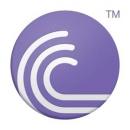 BitTorrent Pro + Modifications